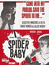 Spider_Baby_rent