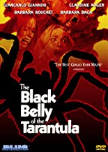 Black_Belly_Tarantula_dvd