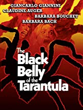 Black_Belly_Tarantula_rent