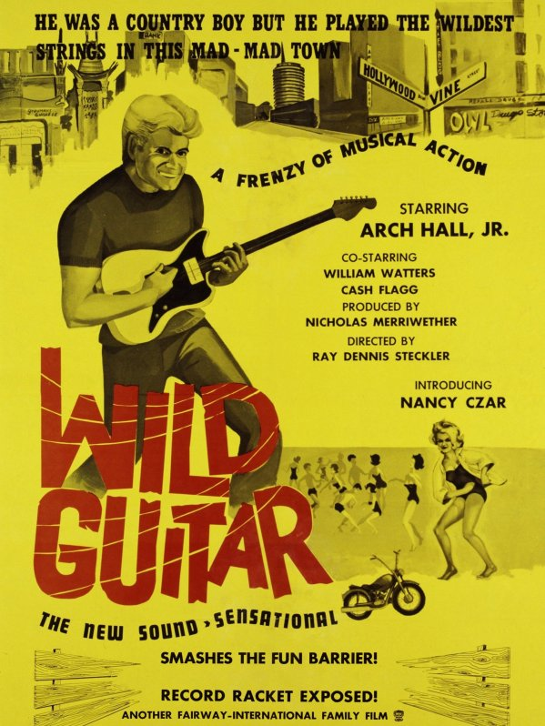 Wild_Guitar_1