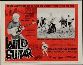 Wild_Guitar_rent
